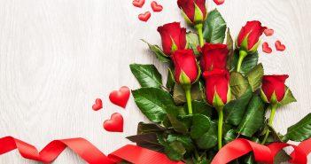 Hình ảnh hoa hồng đẹp lãng mạn