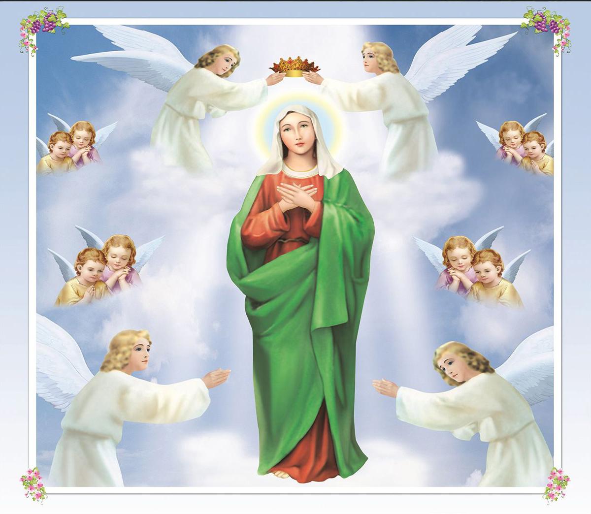 download hình mẹ maria về máy tính