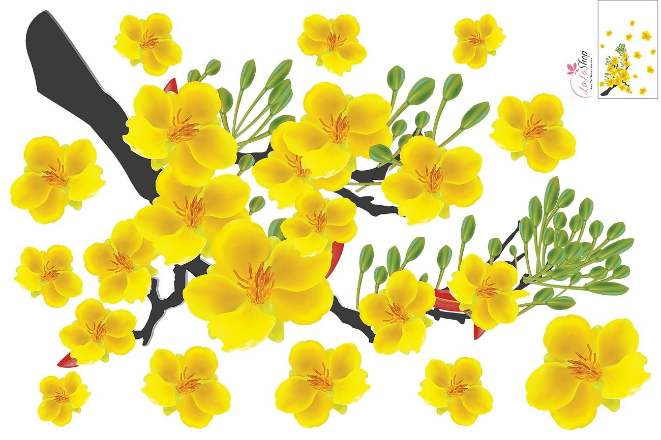 tải hình hoa mai vàng