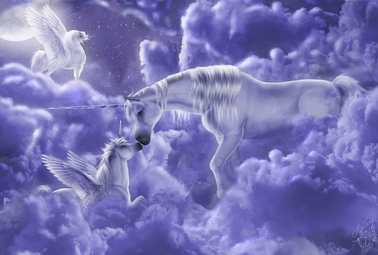 hinh nen ky lan unicorn 25