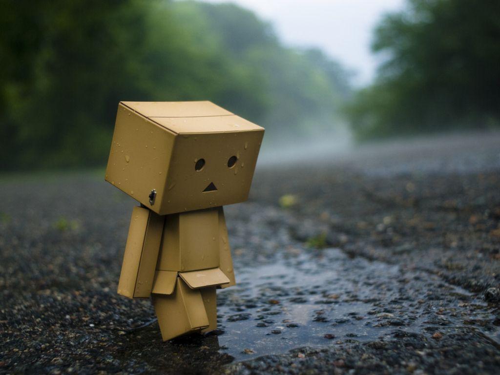 Hình ảnh người gỗ cô đơn