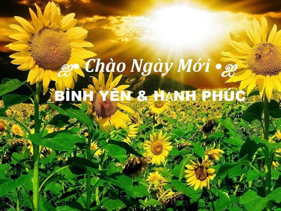 Chào ngày mới bình yên và hạnh phúc