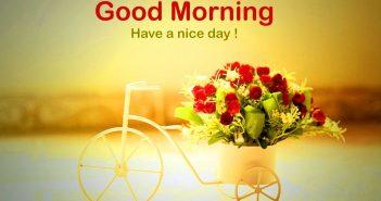 Hình ảnh good morning đẹp