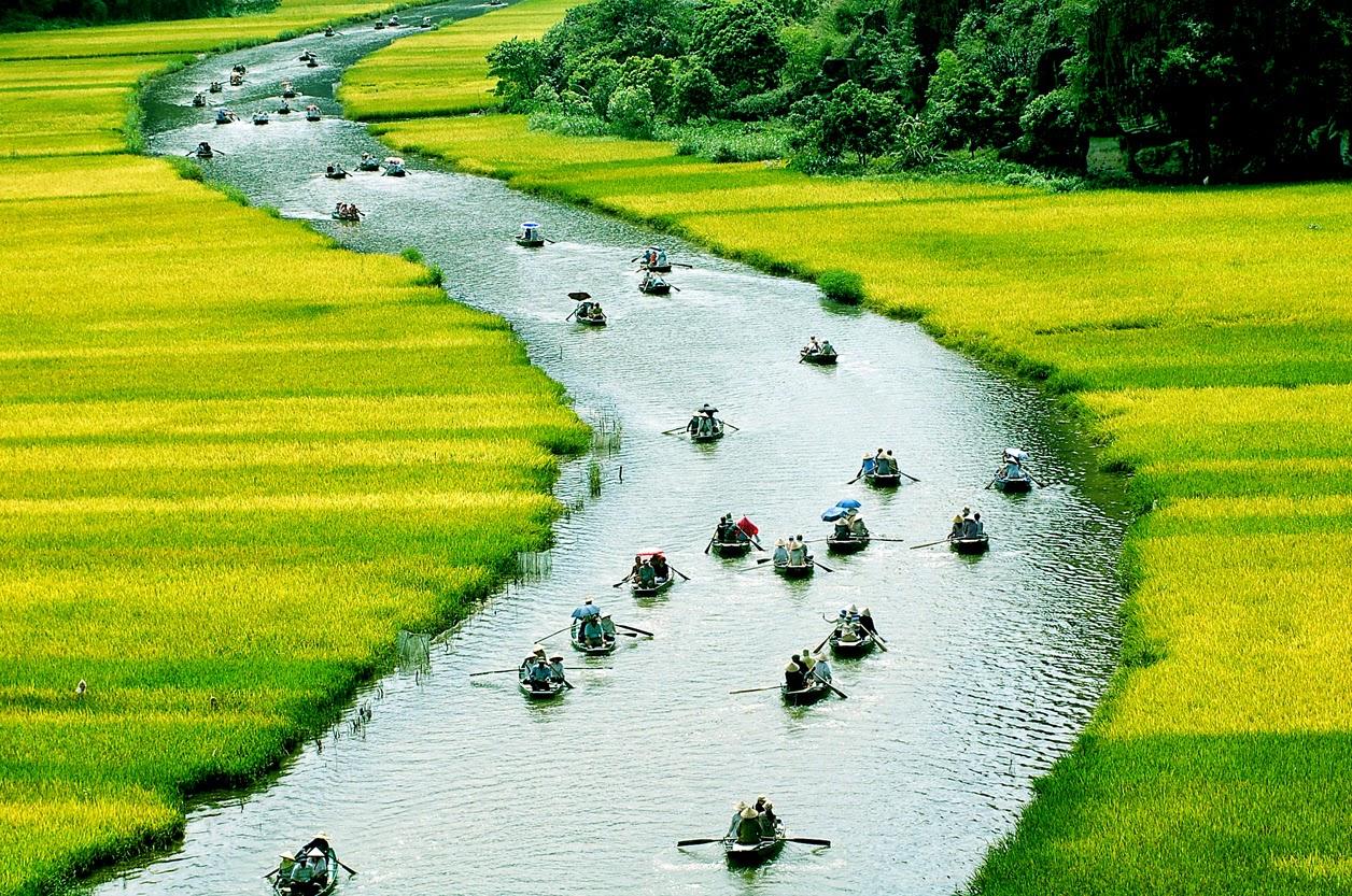 Tải ảnh miền Tây sông nước